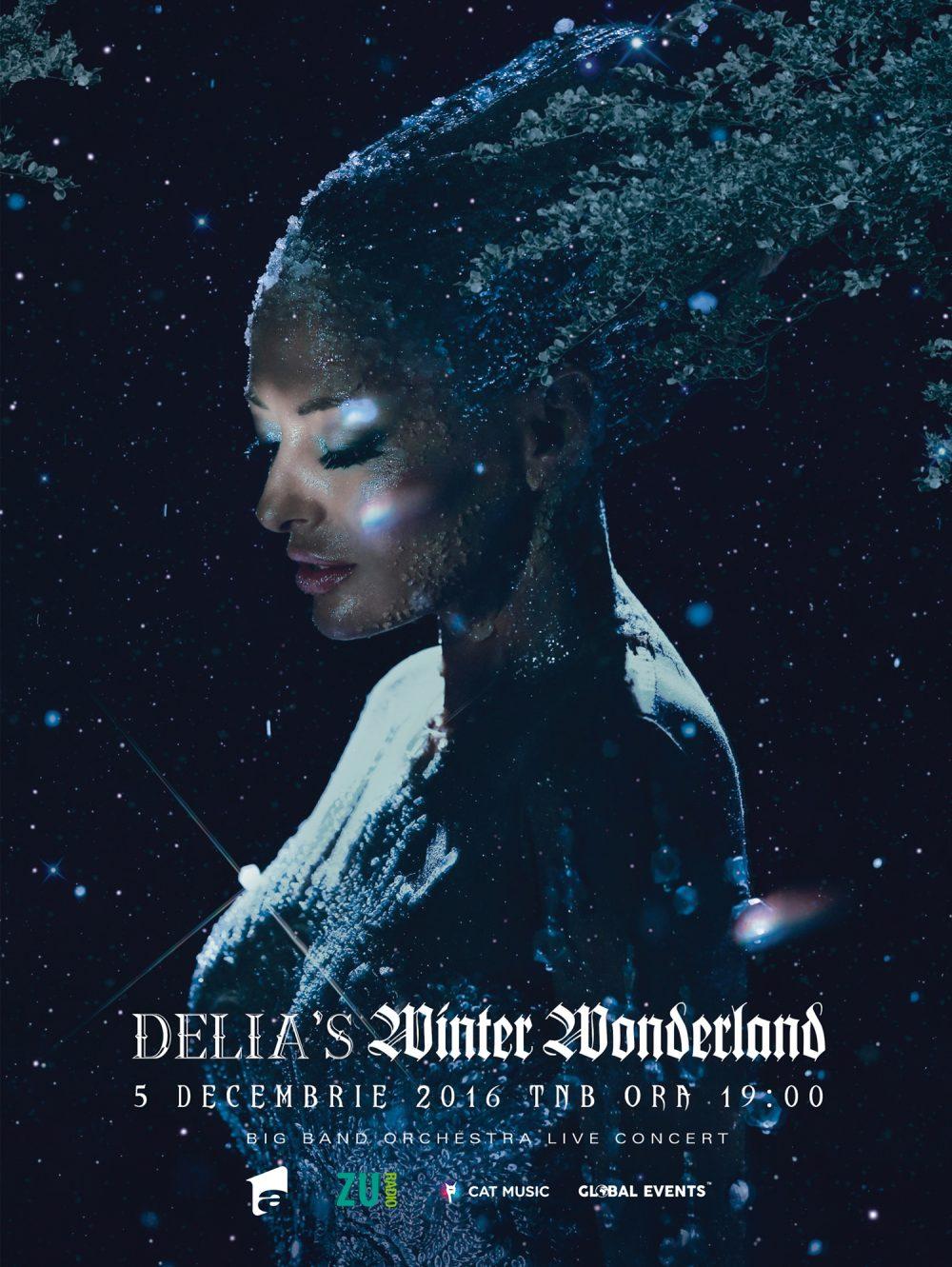 delia-s-winter-wonderland-poster